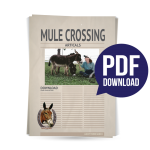 Mule_Crossing_Icon_#5
