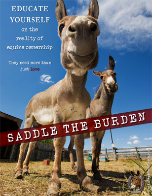 Saddle the Burden