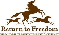 Return to Freedom logo