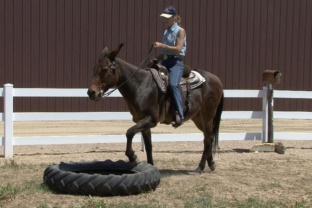 Straight Forward Under Saddle Obstacles