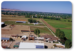 Lucky Three Ranch from above