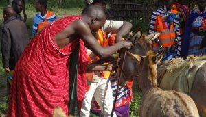 cahw-picha-tanzania