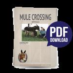 Mule_Crossing_Icon_#5