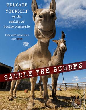 Saddle the Burden