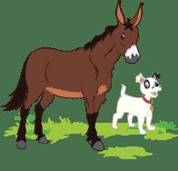 Jasper the Mule and Moxie the Dog